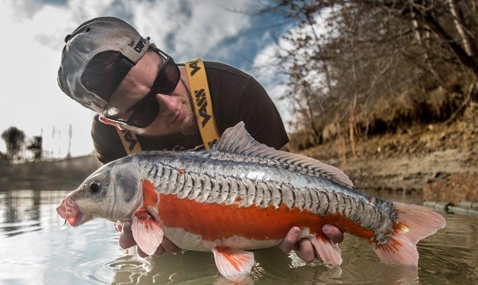 Gagner en efficacité sur une pêche rapide