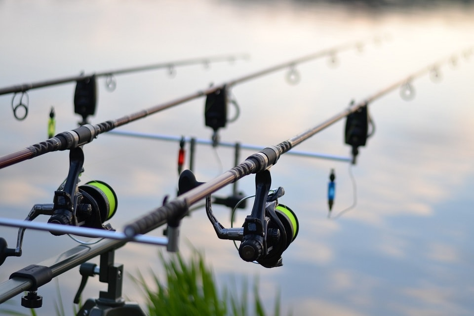 Essential gear for getting started carp fishing: Part 1