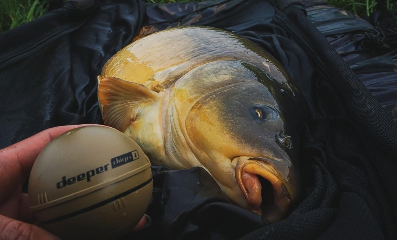 Mijn ervaring vissen met de Chirp+ 2