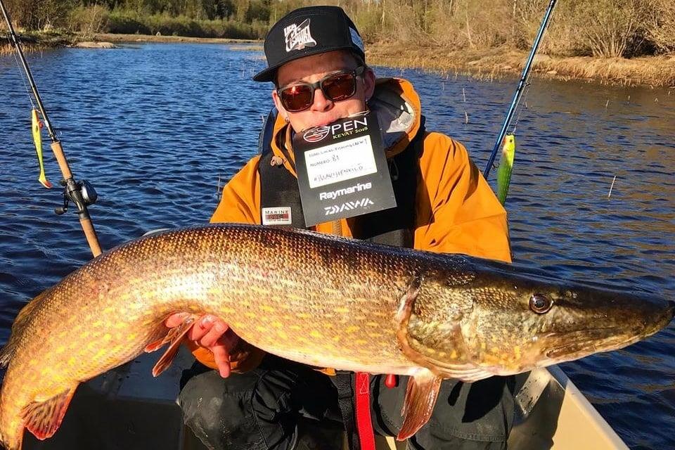 Kuinka kalastaa haukea? Parhaat vinkit suoraan kalamieheltä