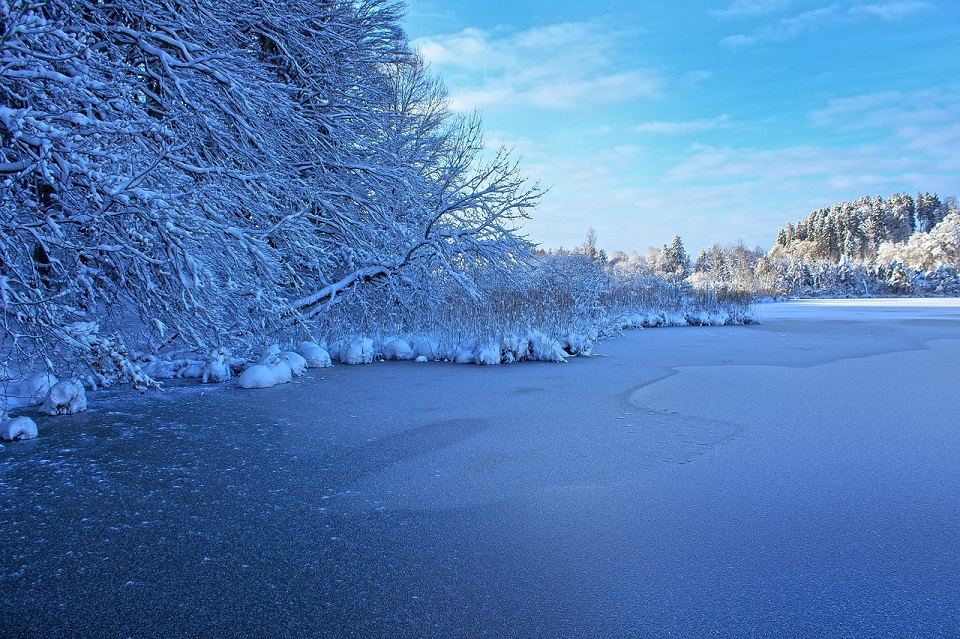 Щука и судак — отличный сюрприз во время зимней рыбалки