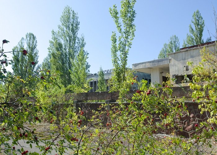 chernobyl surroundings