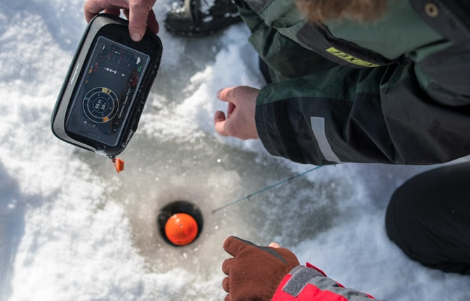 Winter smartphone case
